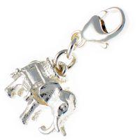 Elephant With Howdah Silver Charm